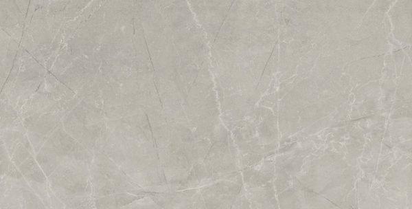 Bayona Silver Polished 60cm x 120cm